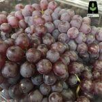 انگور شامپاین
