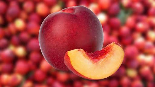 میوه ی شلیل