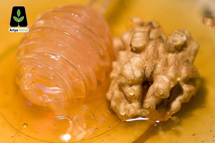 عسل و گردو
