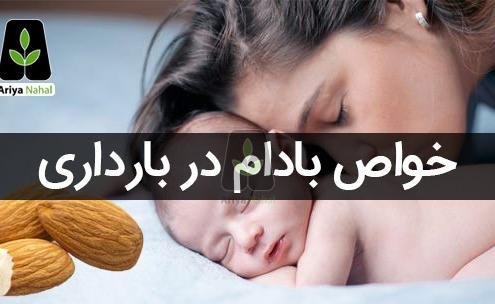 تاثیر بادام در بارداری