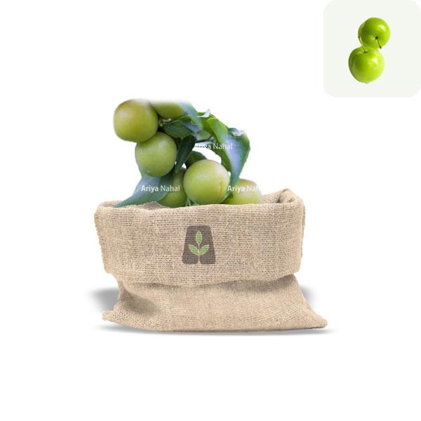نهال گوجه سبز سعدی