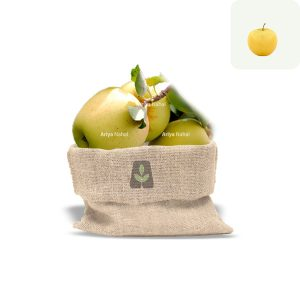 نهال سیب زرد لبنان