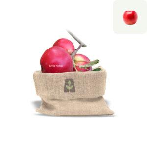 نهال سیب مشهدی
