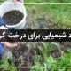 کود شیمیایی برای درخت گردو