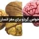خواص گردو برای مغز انسان