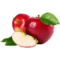 قیمت نهال سیب